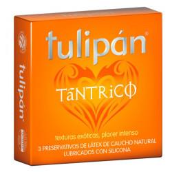 Tulipán Tantrico-0